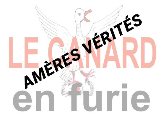 Ameres-verites-Canard-Furie