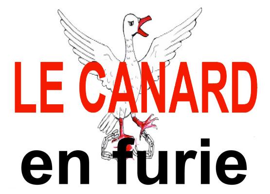 Le coup de gueule du Canard en furie