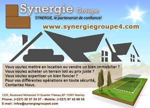 Synergie Groupe p