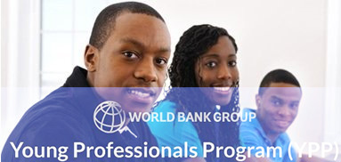 Young Professionals Program Niger