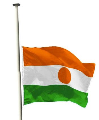 """Résultat de recherche d'images pour """"drapeau berne nigerdiaspora"""""""